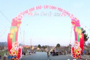 Thị trường Đào, Quất sôi động trong dịp Tết, Cây Quất bán 150 triệu đồng.